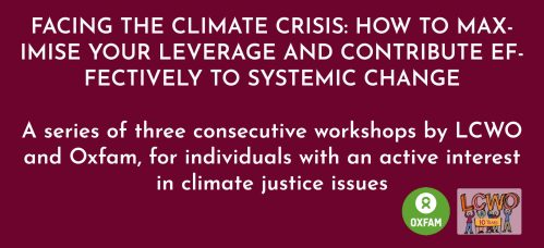 Facing the climate crisis: how to maximise your leverage and contribute effectively to systemic change - course of 3 workshops, limited spaces @ Online