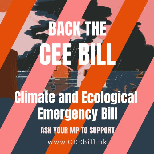 Can the UK lead on climate change? The CEE Bill and our future @ Online event