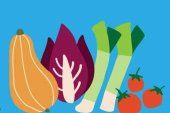 Talking food and climate – a video resource
