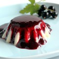 Panna Cotta with Blackcurrant Sauce - On a Plate