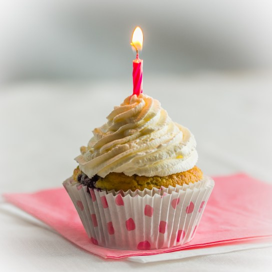 Blog's 1st Anniversary | Low-Carb, So Simple!