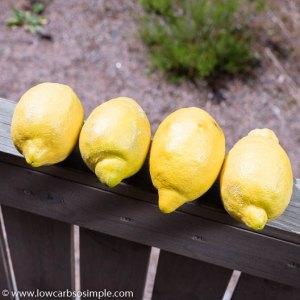 Lemons | Low-Carb, So Simple