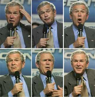 bush_standup.jpg