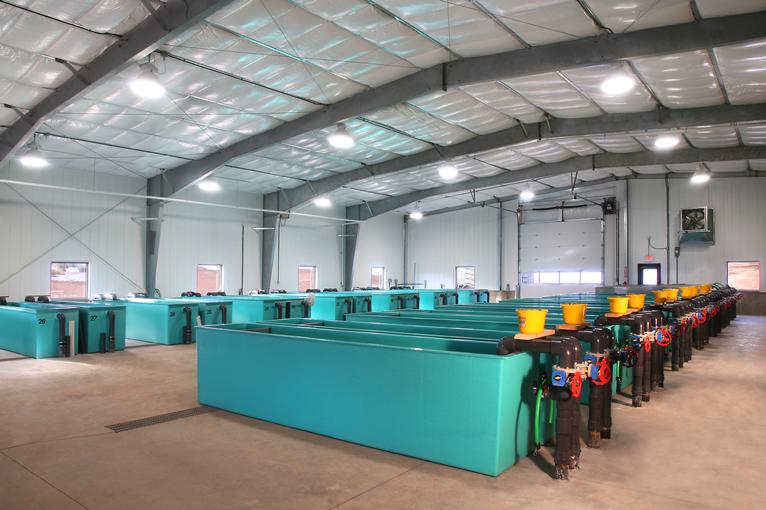 Fish Hatchery Design And Construction