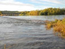 Bortons Pond (3)
