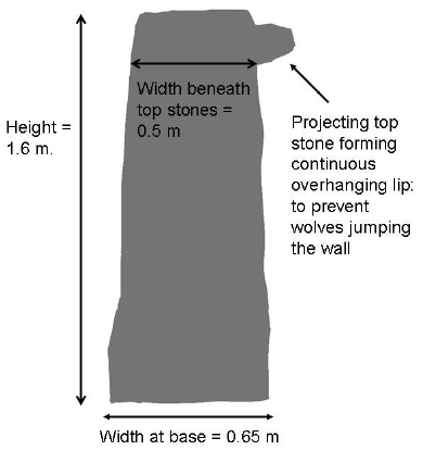 Profile of a medieval double dry stone wall at Winskill with the original top stones intact, this was part of the infield boundary built circa 1300. The projection formed by the overhanging top stone was intended to prevent wolves jumping into the infield area.