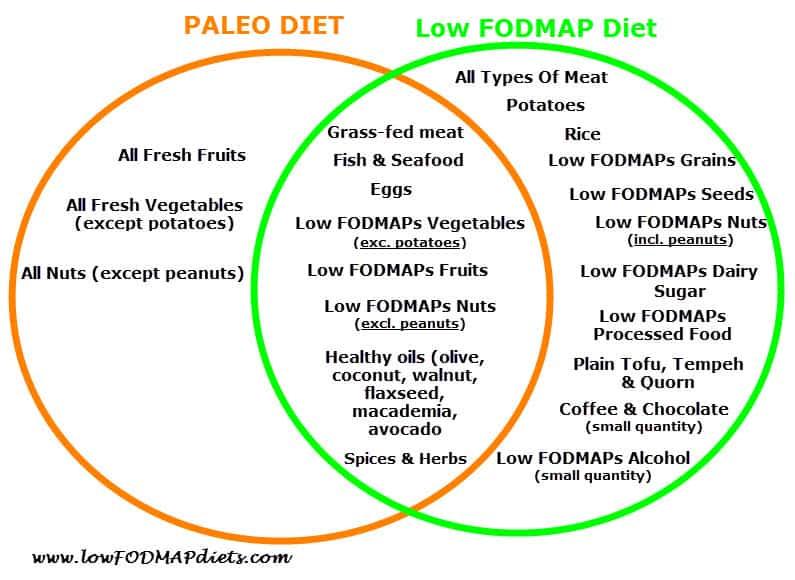 low fodmap diet vs paleo