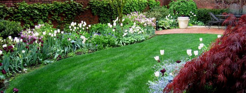 Low Maintenance Gardens  Garden Design  Ideas in Brisbane Queensland AU