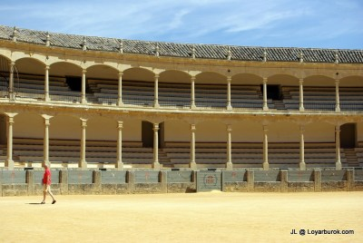This would be all that's left if the art of bullfighting is banned