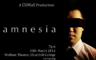 Amnesia: the play