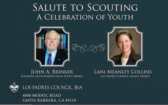 Salute to Scouting