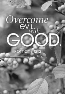 Do not be overcome by evil, but overcome evil with good (Rom. 12:21)