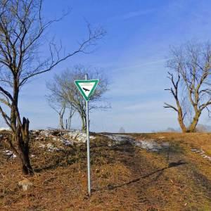 geschutzter Landschaftsbestandteil