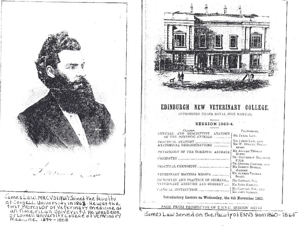 Press cuttings regarding the Epizootic of 1872