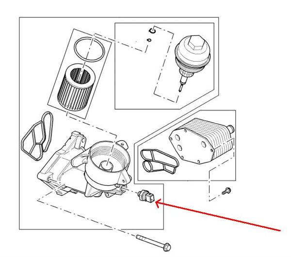 Land Rover olietryks sensor for TD6 motoren i Range Rover GCAT