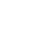 LS Global Logo