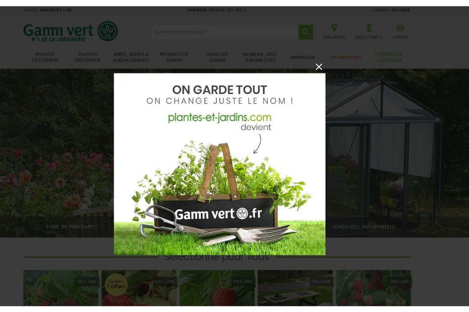 gamm vert concentre ses forces sur le net