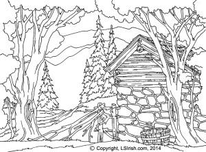 Lora Irish Stone Barn Line Pattern
