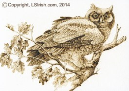 pyrography owl on watercolor paper