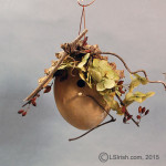 Craft Gourd Art Bird House Project