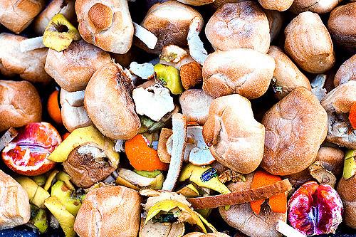 Food waste. Credit: Andrea Leganza