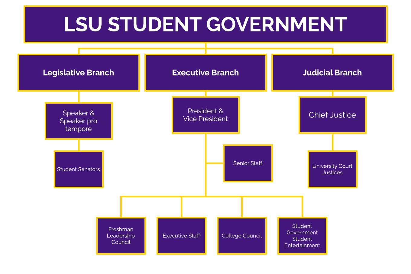 u s government structure diagram wiring for 7 prong trailer plug about us lsu student