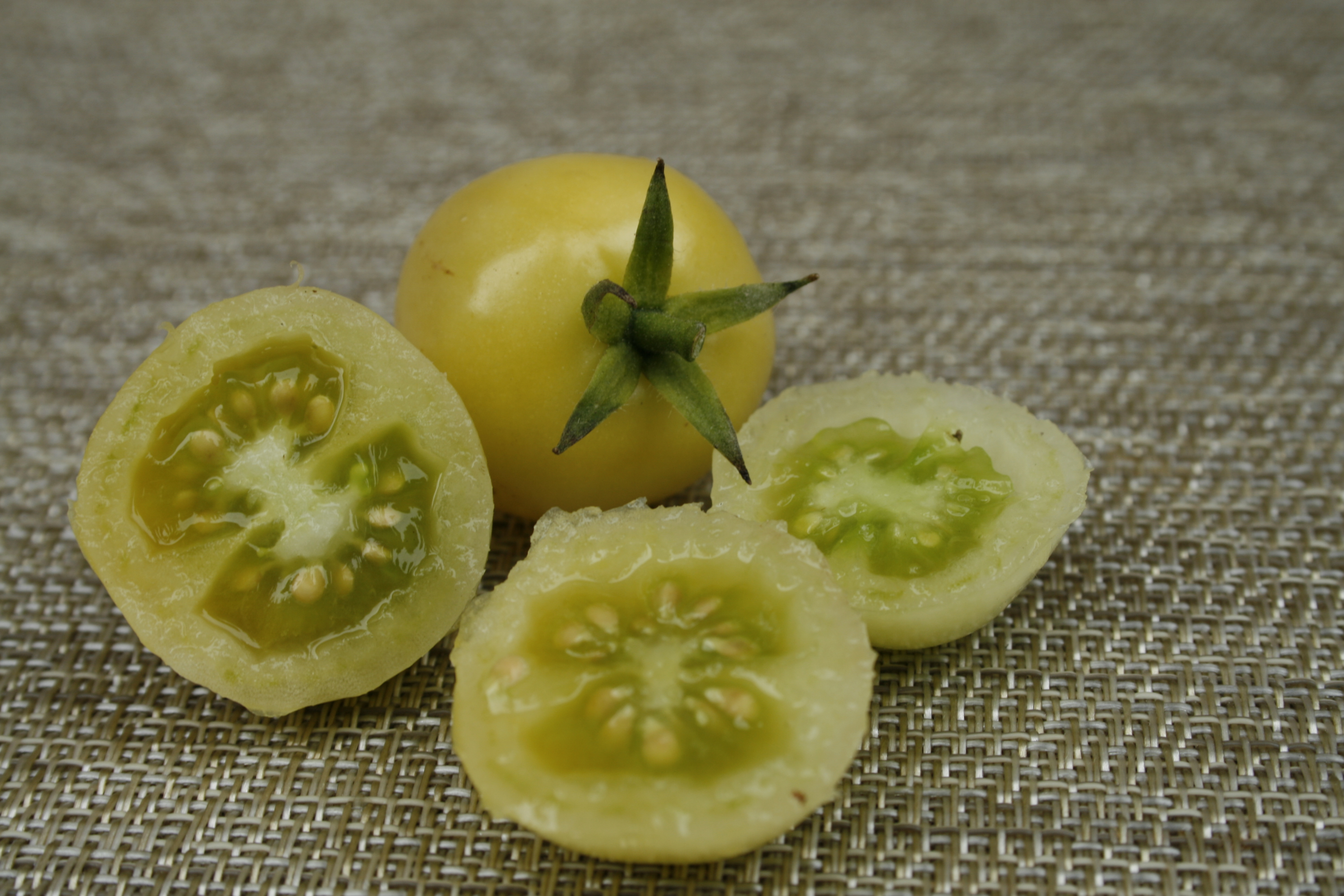 container grown tomatoes