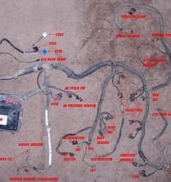 1993 camaro lt1 wiring harness information painless lt1 wiring harness ls1 6 0 wiring harness [ 2000 x 1670 Pixel ]