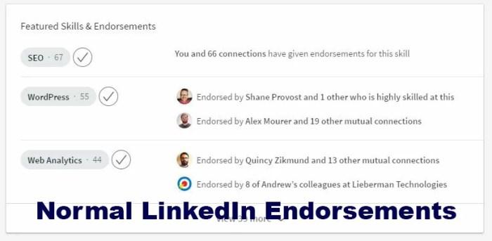 LinkedIn SEO and Endorsements