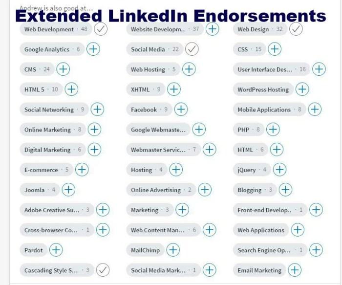 LinkedIn SEO Extra Endorsements