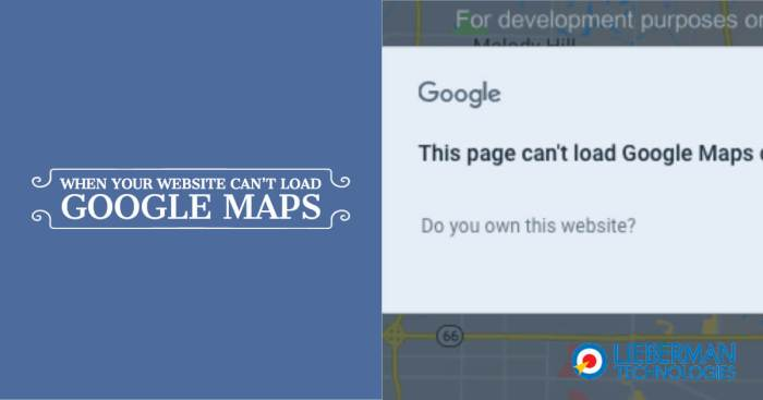 This Page Can't Load Google Maps image