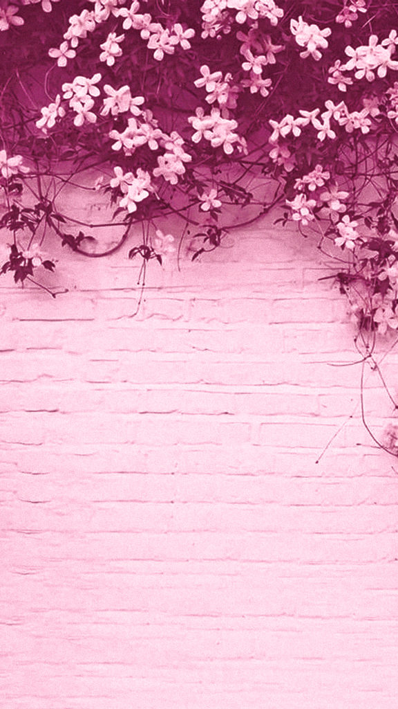 The 40 Cutest Pink Tumblr Wallpapers For Iphone E Android Lu
