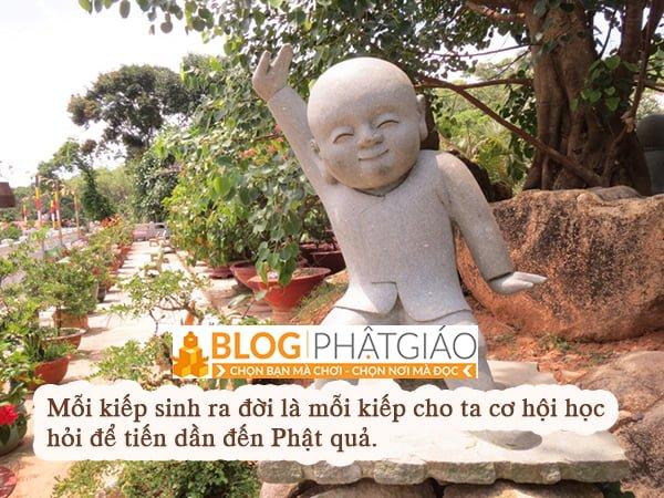 Phật pháp bất ly thế gian pháp 6