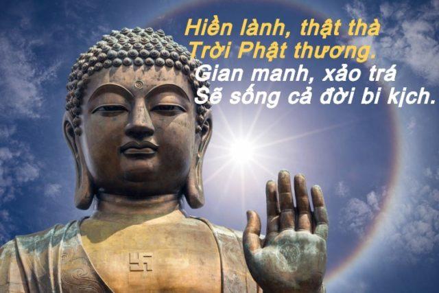 Hình đại diện Trời Phật luôn công bằng, chỉ thường ban tốt đẹp và may mắn cho người lương thiện tốt bụng