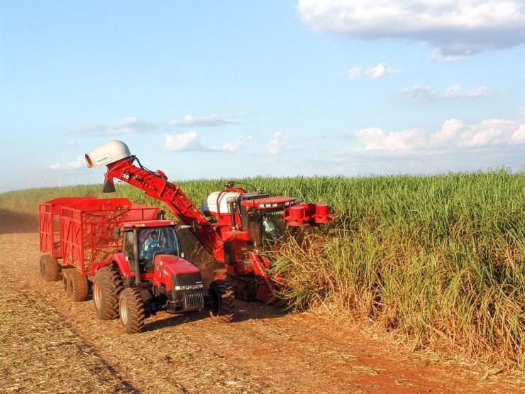 trator com transbordo e colheitadeira de cana de açúcar com equipamentos Lubmix realizando a colheita da produção agrícola.