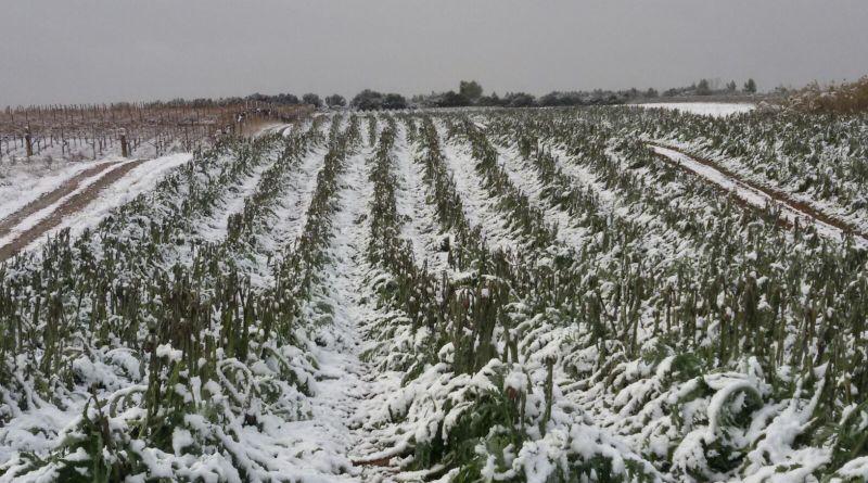 Basilicata: Oltre 7,5 milioni di euro per i danni nevicata gennaio 2017