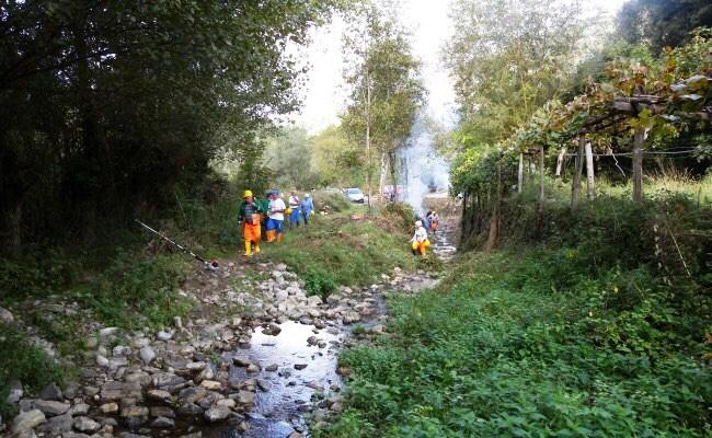 progetto esecutivo forestazione