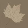 Dicembre - L'INVERNO - platanus acerifolia - foglia di platano. Pittura lavabile su legno 30x30.
