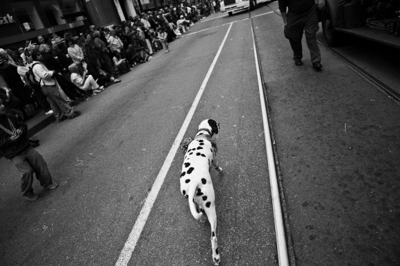 St. Patrick's Day Parade. San Francisco. 2007