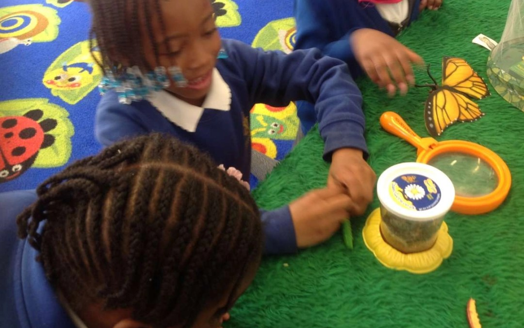 Beethoven – having fun with minibeasts