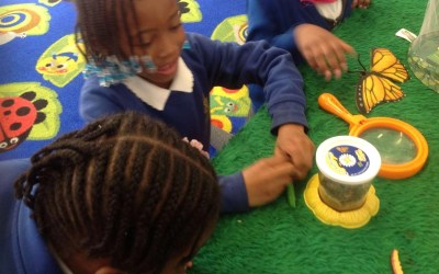 Beethoven - having fun with minibeasts