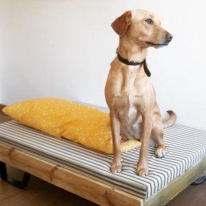 cama para mascotas8