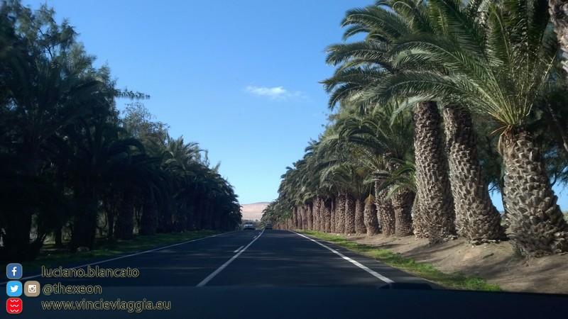 Fuerteventura - 2014 - 037