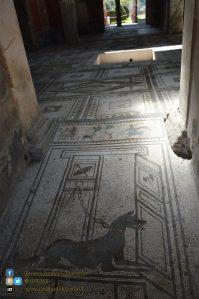 Pompei - scavi - dettaglio e affreschi