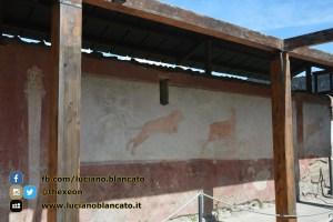 Pompei - scavi - dettagli villa e affreschi