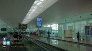 W1 Vueling a Barcellona - 2014 - foto n 0204