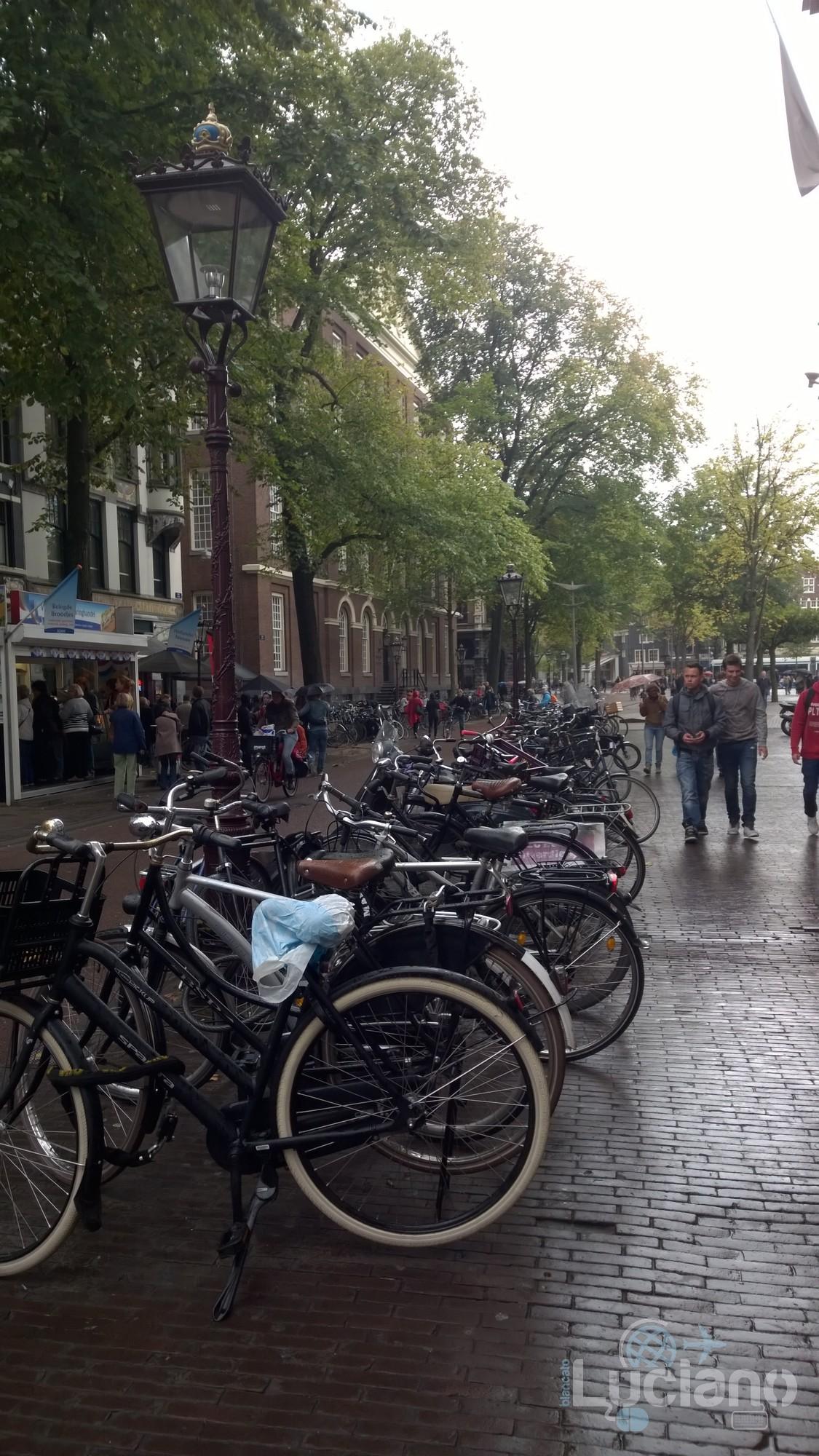 amsterdam-2014-vueling-lucianoblancatoit (158)