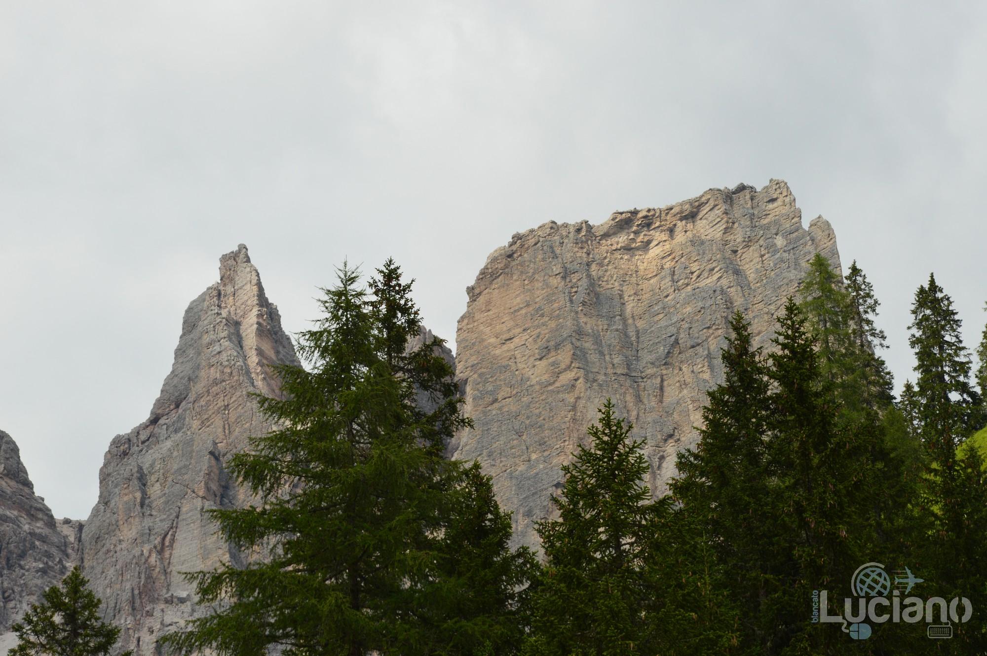 Dolomiti - Cime e boschi - Veneto