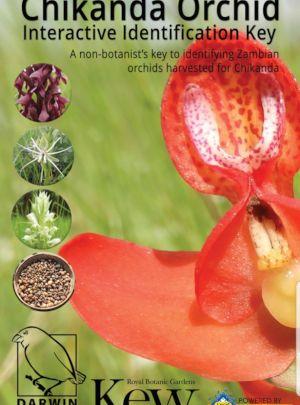 Chikanda Orchid Lucid Mobile app splash screen