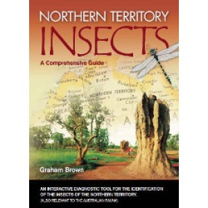 Northern Territory Insects